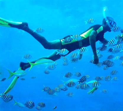 Formentera sede de la fotografía submarina