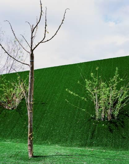 Premio Pilar Citoler de fotografía con 15.000€ de premio