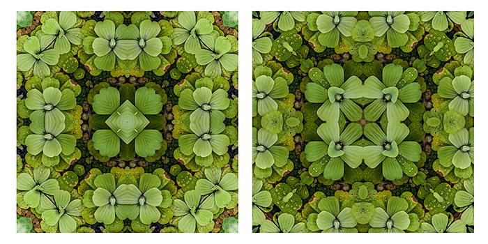 Tutorial: crear imágenes caleidoscópicas con Photoshop