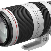 Nuevo objetivo Canon EF 100-400 mm, un potente telezoom compacto y versatil