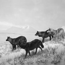 Gran exposición de un maestro japonés: Hiroshi Sugimoto en la Fundación Mapfre