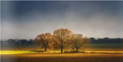 Revista LNH 25, toda la fuerza de la naturaleza en imágenes espectaculares