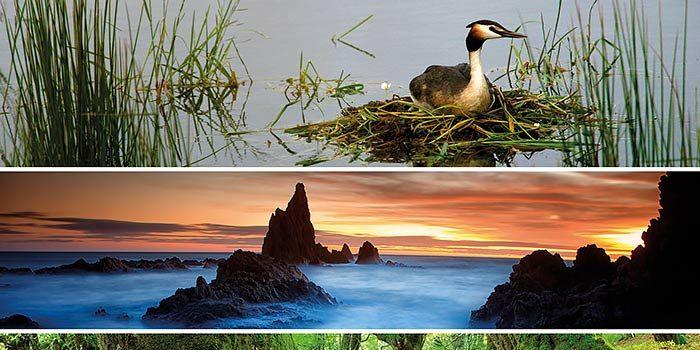 libro-lugares-para-fotografiar-la-naturaleza-david-santiago-co