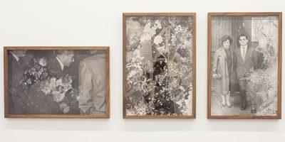 Exposición Trauma y las imágenes fantasmas, Fontcuberta tras el alma de la fotografía