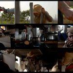 Seminario online gratuito sobre el uso de cartas de color en vídeo, desde la captura a la postproducción