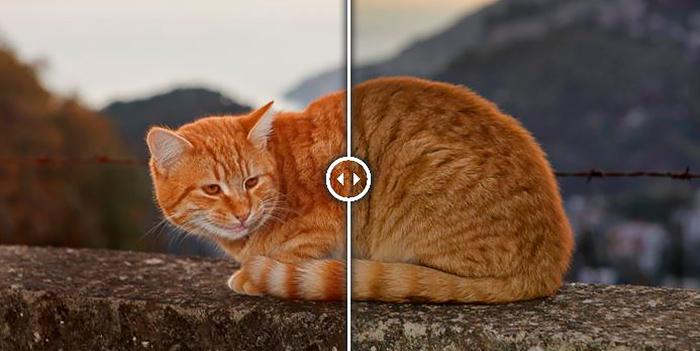 Photolemur 2.2: procesado automático inteligente de fotografías