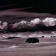 Un libro sobre la fotografía digital y química como medio de expresión artística