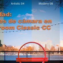 Novedades Lightroom 7.3 y Adobe Camera Raw: nuevos perfiles y una interfaz más gráfica