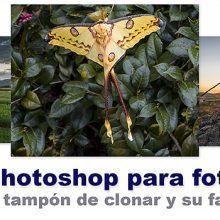 Curso de Photoshop 16 - Tampón de clonar todas las opciones